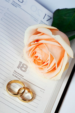 wedding rings and rose on diary page