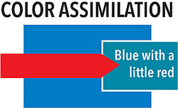 assimilation psychology definition