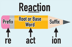 Are Base Words and Root Words the Same?