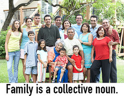 A large family (collective noun example)