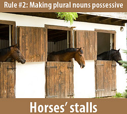 3 horses in their stalls: plural possessive is horses