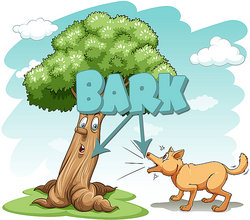 illustration of tree and dog with word bark above