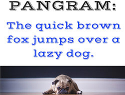 dog lying on floor with text pangram: the quick brown fox jumps over a lazy dog