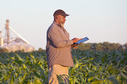 farmer in field using tablet