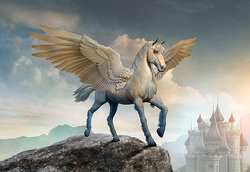 Pegasus, the winged stallion