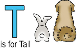 T is for tail