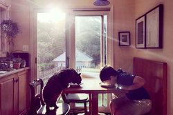 boy and cat eating from plate