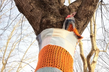 This tree is a victim of yarn bombing.