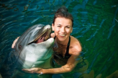 Swimming with dolphins might be on your bucket list.