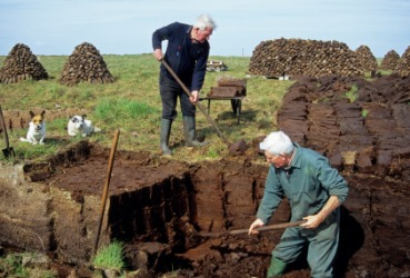 Men digging peat for fuel.