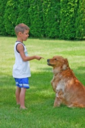 A boy gives his dog an admonition.