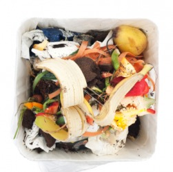The contents of a trash container can get pretty nasty.