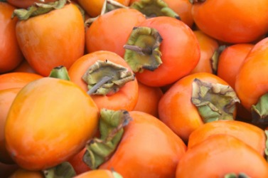A pile of persimmons.