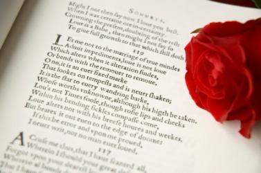 A Shakespearean sonnet.