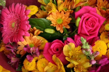 A gorgeous bunch of flowers.