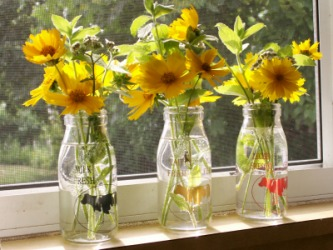 Flowers on the windowsill.