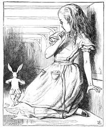 Alice is the protagonist of this story.