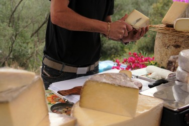 Cheese tastings being offered at an exposition.