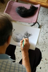 A man draws a picture of his cat.