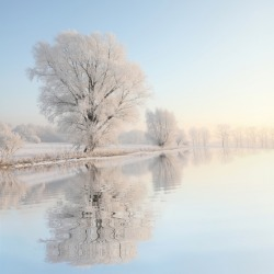 A beautiful winter morning.