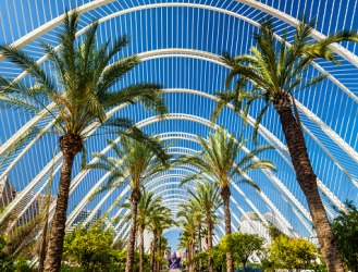 The architectural structure of the Umbracle in Valencia, Spain is an example of a parabola.