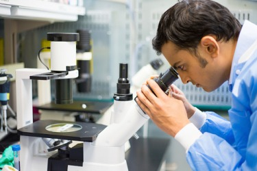 A scientist looking through a microscope.