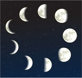 This illustration of the moon phases exhibits the periodicity of a full moon.