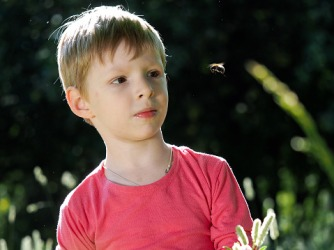 The bee was being a pest because it wouldn't stop circling around the boy's head.