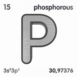 Phosphorus dictionary definition phosphorus defined phosphorus urtaz Image collections
