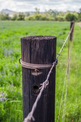 A fence post