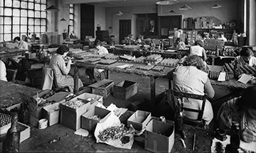 Women working in a preindustrial toy soldier factory in the 1930's.