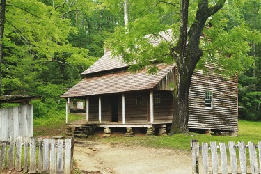 A primitive cabin