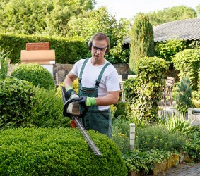 A professional landscaper