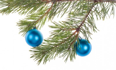 Two blue ornaments on a tree.