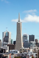 The Transamerica pyramid and skyline in San Francisco, California.