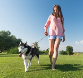 Nicole takes her Siberian Husky to the dog park for recreation.