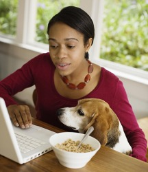 Denise was replying to an email when she was interrupted by her dog Dexter.