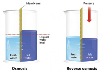 An illustration comparing Osmosis to Reverse Osmosis.