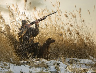 As soon as the hunter's dog hears the shot ring out, he runs toward the fallen duck.