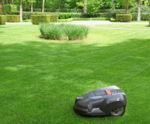A robot lawn mower might be a good investment for people who dislike yard work.