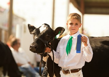 Garrett has won the first place award for three years running at the county fair in the dairy heifer category.