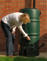 Linda collects rainwater runoff into a barrel for her garden.