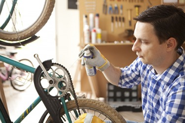 Greg sprayed lubricant on the bike chain because it developed rust which prevented it from moving smoothly.