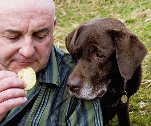 Steve found it hard to enjoy his potato chips with his dog Muffy salivating over his shoulder.