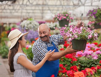 Camila relies on Hector's sapient advice when purchasing plants for her flower garden.