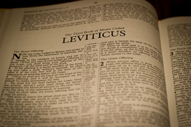 In the Bible, the Book of Leviticus mentions scall.