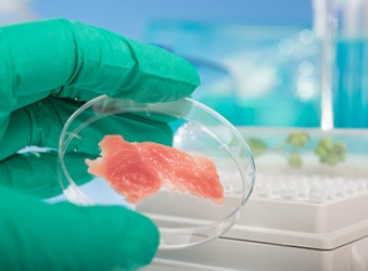 This meat grown from stem cells in a laboratory is an example of schmeat.