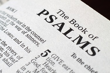 Psalm 68:19 Praise the Lord: praise God our savior! For each day he carries us in his arms. Selah