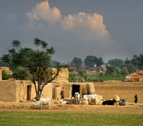 The villages in Punjab are self-sufficient for the most part and rely very little on outside resources.