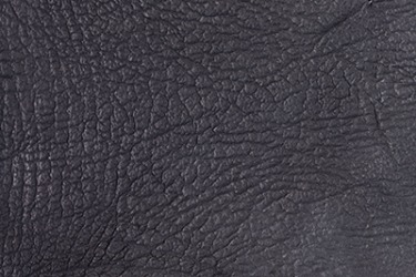 Sharkskin or shark leather has a fine grain texture that can be made into a variety of products such as wallets and belts.